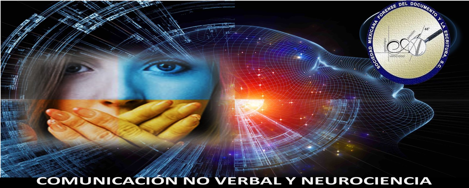 NEUROCIENCIA Y LA COMUNICACIÓN NO VERBAL